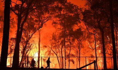 australian brushfires